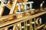 trumpet pudddleduck